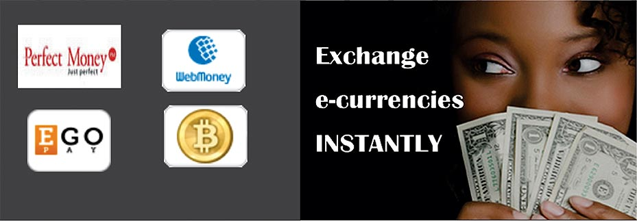 Image result for E-currency Exchangers
